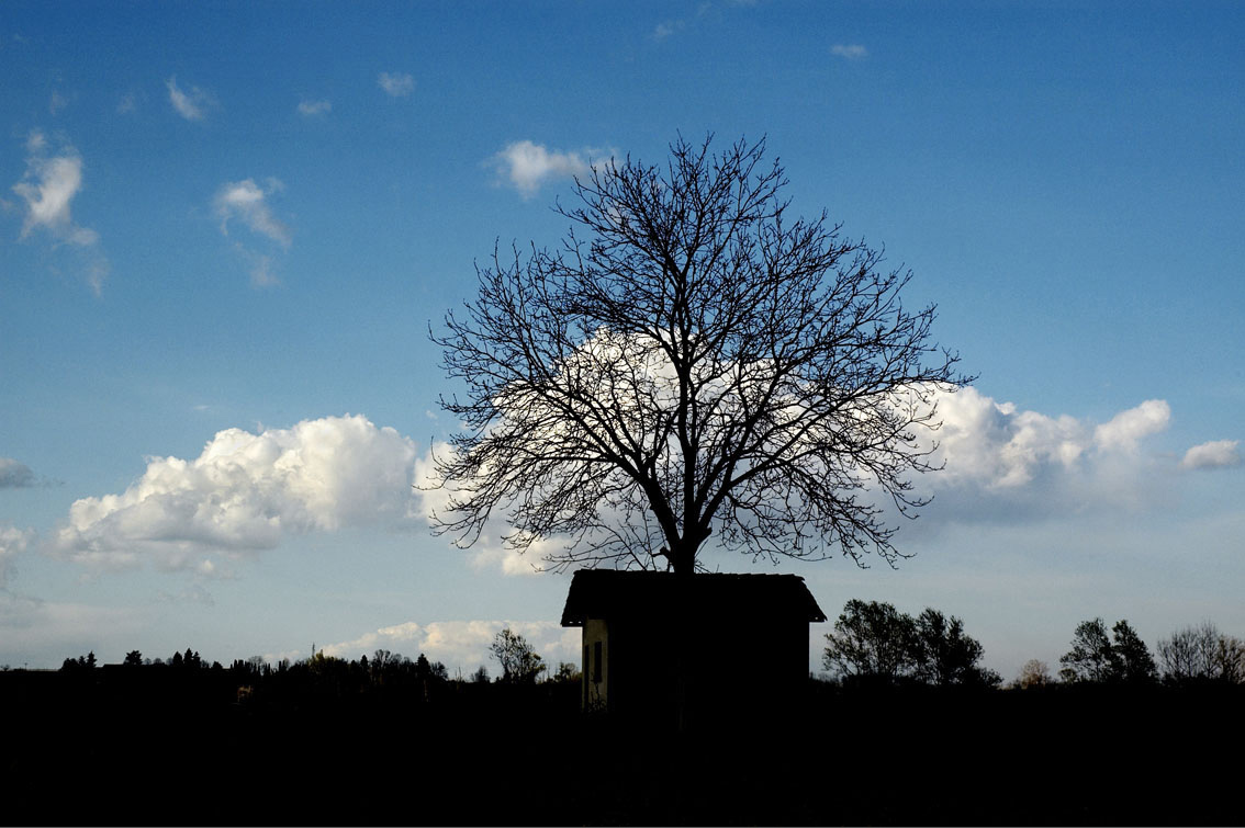 46/50 - WINTER – Homage to Magritte